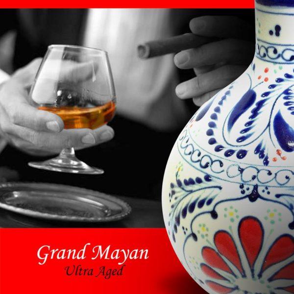 La Ruche du Mexique (Tequila) (7)