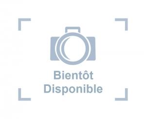 bientot-disponible-300×244