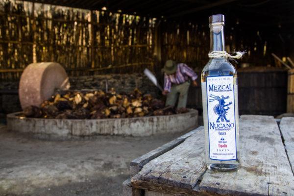 La Ruche du Mexique – Mezcal Nucano